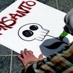 Ernährung ohne Monsanto: Ist das überhaupt noch möglich?